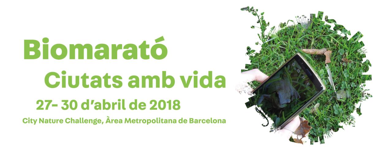 Biomarató_banner